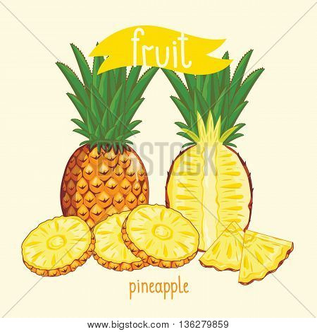Vector pineapple in cartoon style. Natural organic food. Ingredients for fruit salad. Sweet and ripe summer fruit. Isolated pineapple. Half pineapple with green leaf.