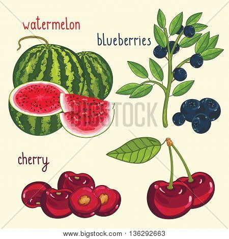 Set of berries mix vector isolated. Healthy eat. Watermelon, blueberries, cherry. Natural organic food. Ingredients for a vegetarian meal. Sweet and ripe summer berries.