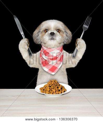 dog going to eat and hold knife and fork -- isolated on black