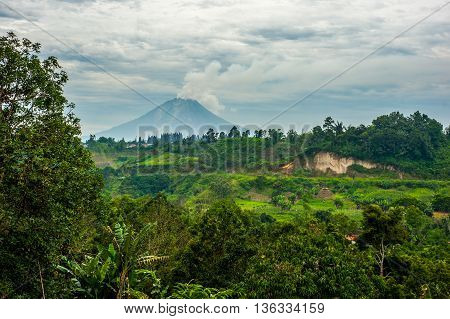 Meadow Landscape with the active Mount Sinabung Volcano on the background in North Sumatra. The volcano has killed 7 people in its eruption 1 year after this image is taken
