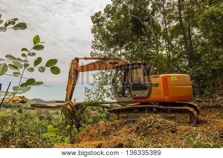 KOTA KINABALU, MALAYSIA - CIRCA JUNE 2016: Deforestation. Borneo rainforest trees knocked down as rain forest is cleared to make way for oil palm plantations.