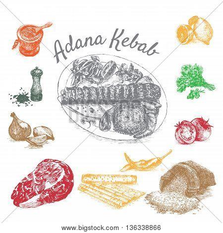 Vector illustration of adana kebab ingredients. Hand drawn colorful illustration on white background