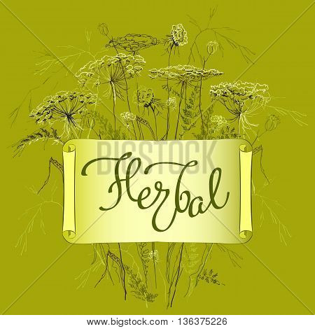 Hand-draw label template with wild flowers and herbs. Herbal lettering calligraphy card. Design for herbal cosmetics, natural and organic product store, package. Vector illustration stock vector.
