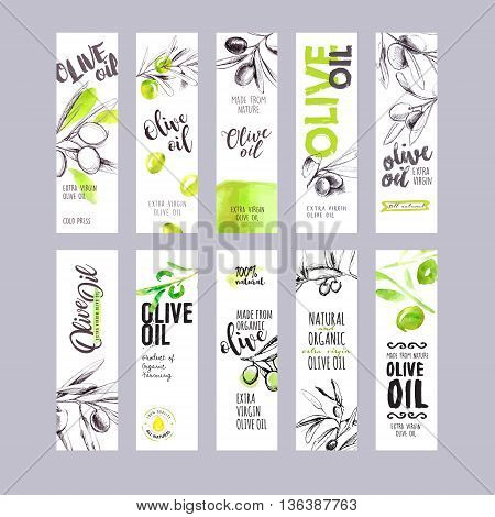 Set of hand drawn watercolor olive oil labels. Vector illustrations concepts for olive oil packaging.