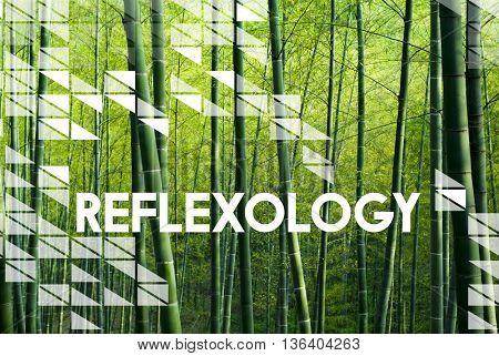Reflexology Healing Relaxation Therapist Wellness Concept