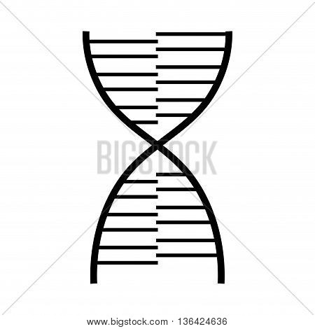 black and white chromosome composition front view over isolated background, vector illustration