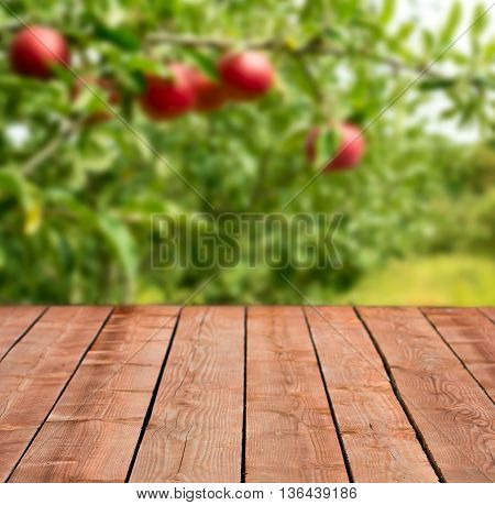 Apple orchard background wooden planks for product placement