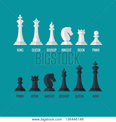 Chess pieces king queen bishop knight rook pawn flat vector icons set. Chess figures black and white. Team with chess pieces illustration