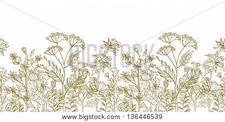 Seamless vector floral border with black white hand drawn herbs and wild flowers. Pattern endless with blossom flowers. Floral seamless border with flowers illustration