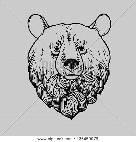 Hand Drawn Graphic Bear.Bear Head Logo Mascot Emblem.isolated on white background