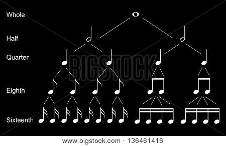 Types of musical notes, white on black background