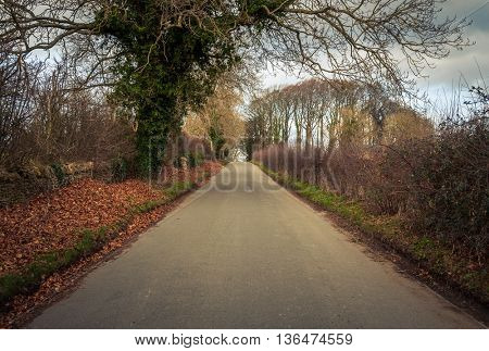 Road in rural Britain in winter
