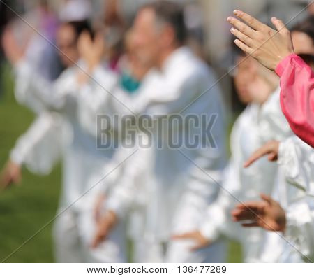 Hand Of Martial Arts Master Tai Chi With Many Followers