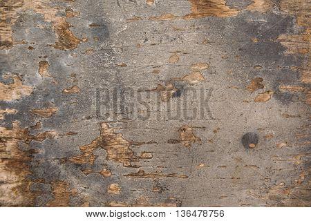natural old wood background closeup, wood, grunge