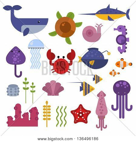Vector set of cute sea animals creatures characters. Cartoon ocean underwater crab sea animals. Cute aquarium life water collection isolated turtle graphic aquatic tropical sea animals. poster