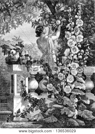 1861 Exhibition of Painting, Young girl picking fruit, painted panel, vintage engraved illustration. Magasin Pittoresque 1861.