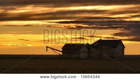 A sunset in a field with some barn farmyard buildings