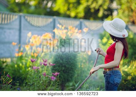 Woman's hand with garden hose watering plants gardening concept