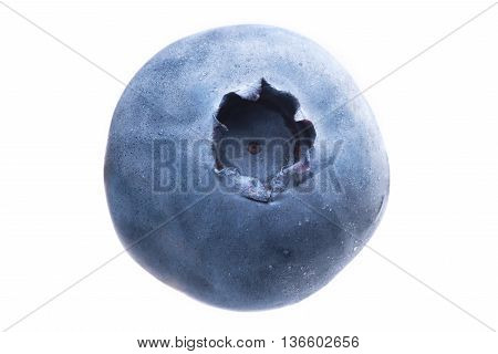 Single Blueberry Or Huckleberry On White Background