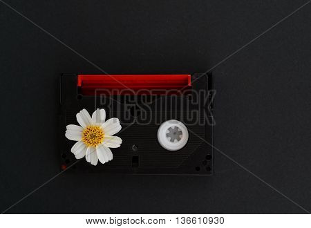 video tape with white flower on grey background retro style