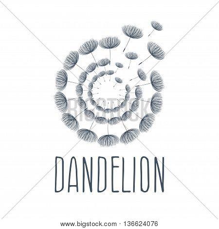 Abstract Fluffy Dandelion Flower Logo. Vector Illustration