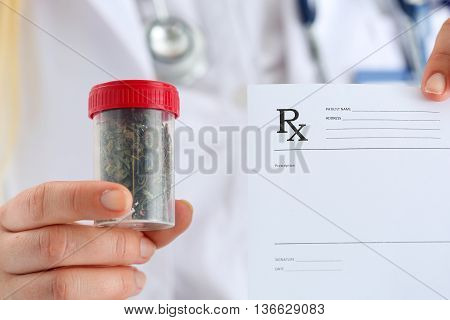 Female Medicine Doctor Hand Hold Medical Marijuana