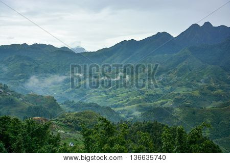Beautiful Fansipan mountain landscape and rice field terraced in rainy season of Sapa, Lao Cai, Vietnam