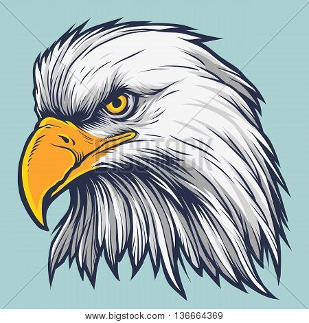 hand drawn American Bald Eagle vector stock
