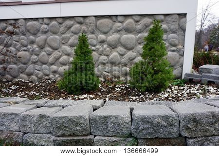 Two dwarf Alberta spruce trees (Picea glauca `Conica´) are planted below the front porch of a home in Harbor Springs, Michigan.