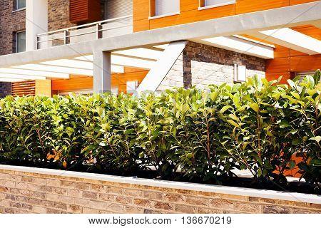 Jardiniere Of Bricks