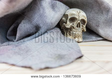 still life. The skull was covered with a cloth on wood background
