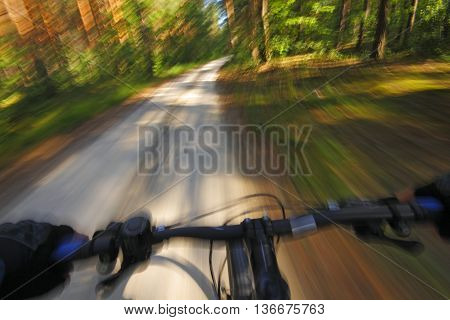 Detail of a fast motion mountain bike on a shady road across forest