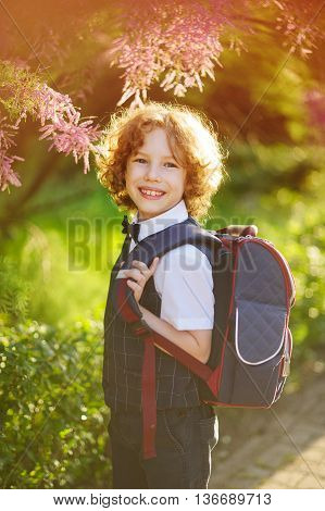 The first grader standing about beautifully blossoming bush. Sunny day. Little schoolboy smiling looking at the camera. The boy has blond curly hair and blue eyes. Behind the student school backpack.