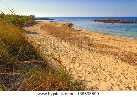 SUMMER. Salento coast: a nature reserve of Torre Guaceto. BRINDISI (Apulia)-ITALY- A nature sanctuary between the land and the sea.