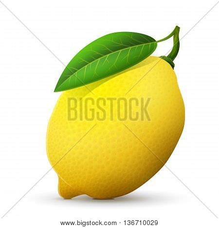 Fresh lemon fruit close up. Lemon with leaf isolated on white background. Qualitative vector illustration about lemon, food, agriculture, fruits, cooking, gastronomy, etc