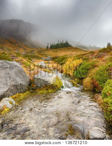 Cascading stream against a backdrop of misty autumn colors on the Wonderland Trail, near Panhandle Gap, in Mount Rainier National Park, Washington.