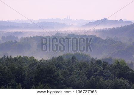 Misty forests in Holy Cross Mountains, Poland