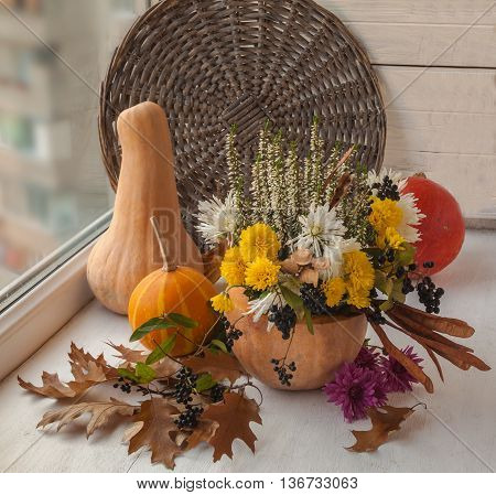 Autumn window design with a pumpkin seeds and flowers of chrysanthemums
