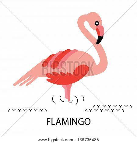 Cartoon african Flamingo bird. Vector cartoon african bird Flamingo made in flat style. Isolated wild african Flamingo. Cartoon wild Flamingo background.