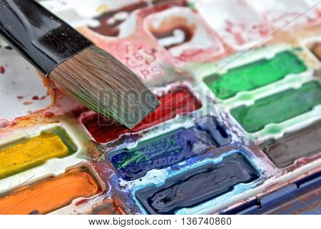 Set of Watercolor Paints and Flat Brush