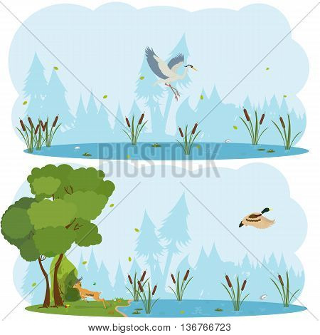 nature scenes. Scene lakes and swamps with living birds. Heron flying over the lake. duck is flying over the marsh. vector