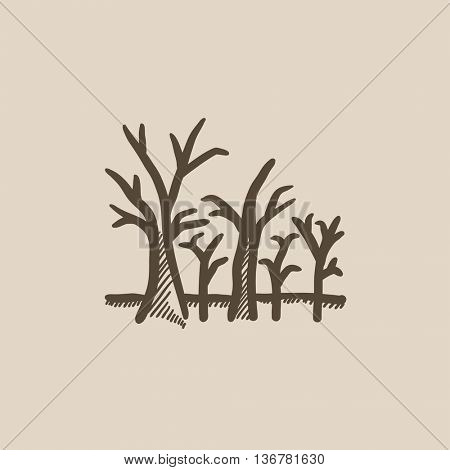 Tree with bare branches vector sketch icon isolated on background. Hand drawn Tree with bare branches icon. Tree with bare branches sketch icon for infographic, website or app.