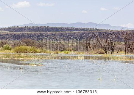 Lake Baringo, Kenya