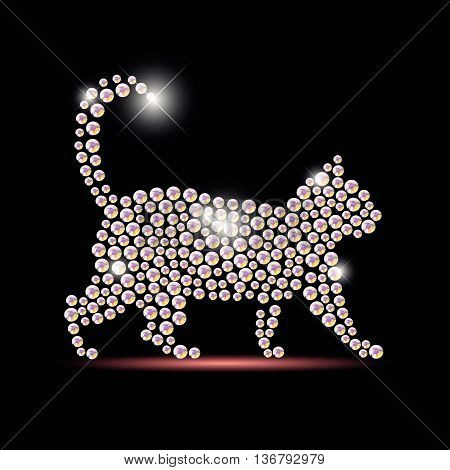 Vector cat portrait made with rhinestone gems isolated on black background. Animal logo, animal icon. Jewelry pattern, hand made product. Shining pattern. Animal silhouette, pet walking.
