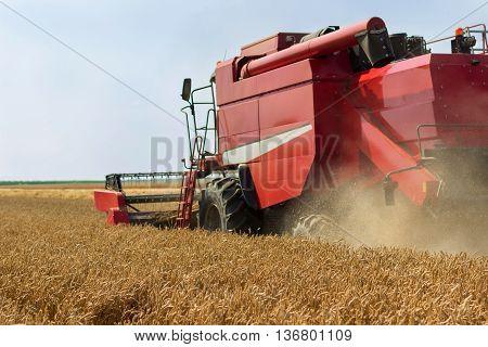 Combine harvester harvesting wheat. Grain harvesting combine. Combine harvesting wheat. Wheat field blue sky.