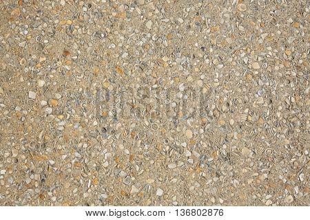 Palm Beach shells concrete soil along the Ocean Blvd in Florida