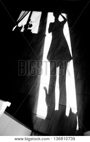 Cheerful girl with a cat - shadow on house floor in the morning. Black and white photo, monochrome