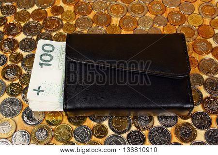 Polish Money And Wallet