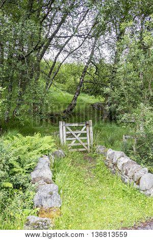 Wooden gate entrance to woodland walk in Scottish Highlands