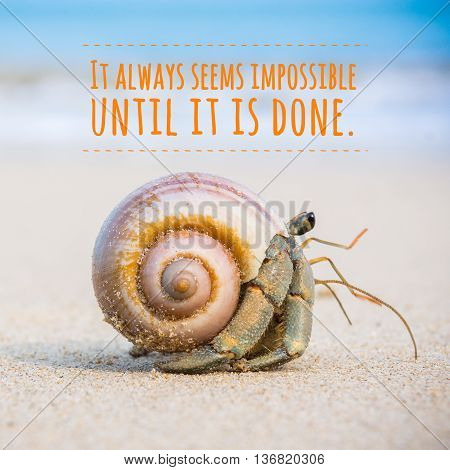 Inspirational quote by unknown source on picture show hermit crab on beach.